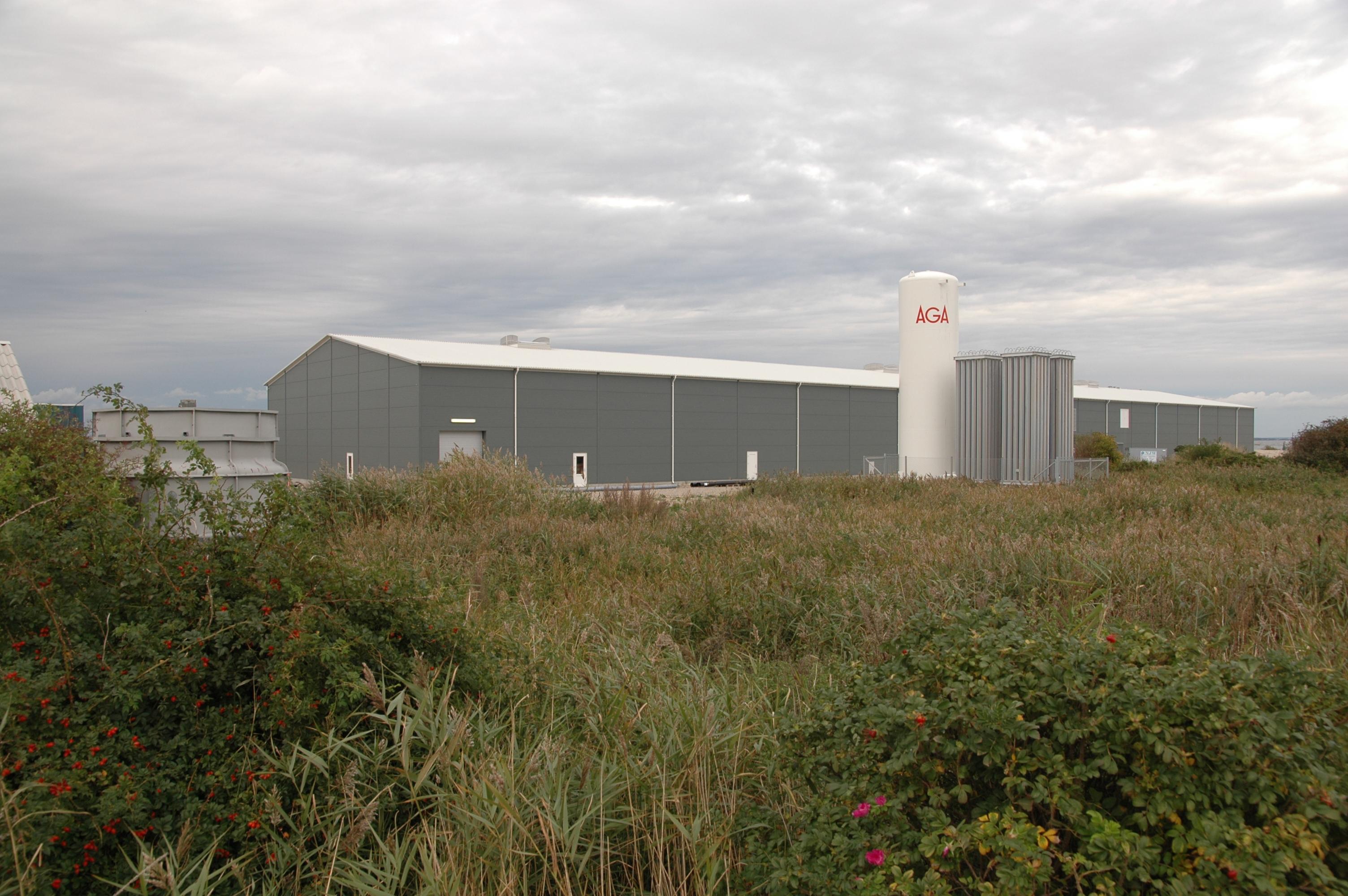 Dänemark: Lachsfarm von Atlantic Sapphire durch Feuer zerstört