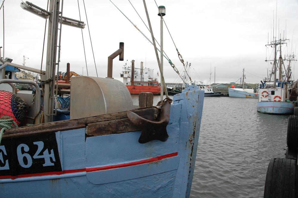 Dänemark: Fischerei in der Krise