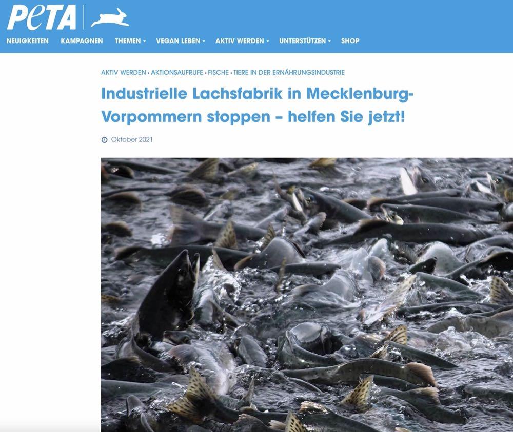 Tierrechtler protestieren gegen geplante Lachsfarm in Malchow